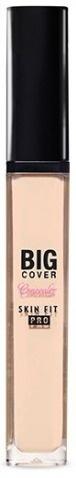 Etude House Big Cover Skin Fit Concealer Pro