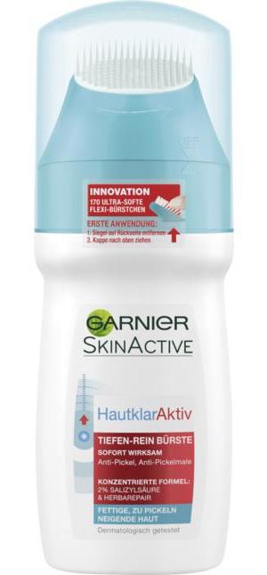 Garnier Skinactive Hautklaraktiv Tiefen-Rein Bürste