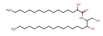 Hydroxypalmitoyl Sphinganine
