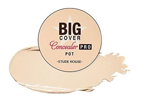 Etude House Big Cover Concealer Pro Pot In Beige
