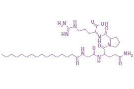 Palmitoyl Tetrapeptide-7