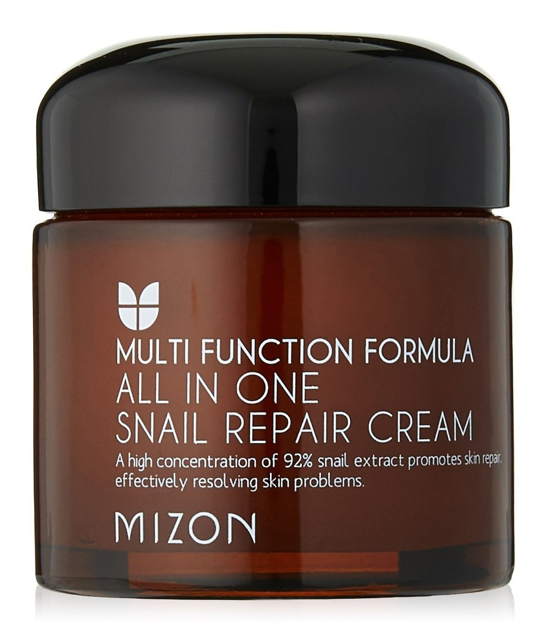 Mizon All In One Snail Repair Cream
