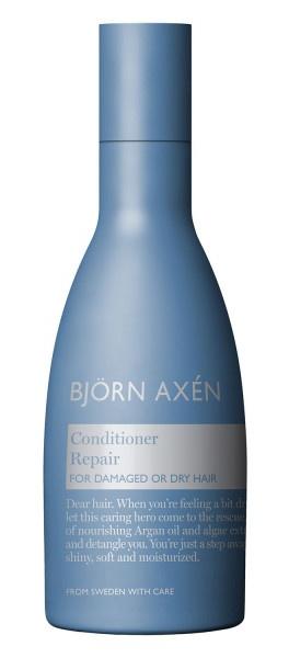 Björn Axén Repair Conditioner