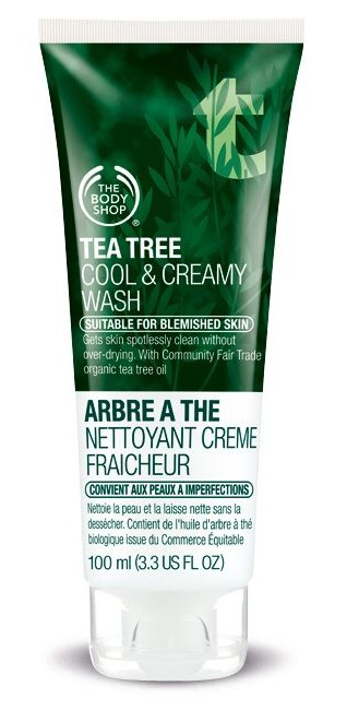 The Body Shop Cool & Creamy Wash